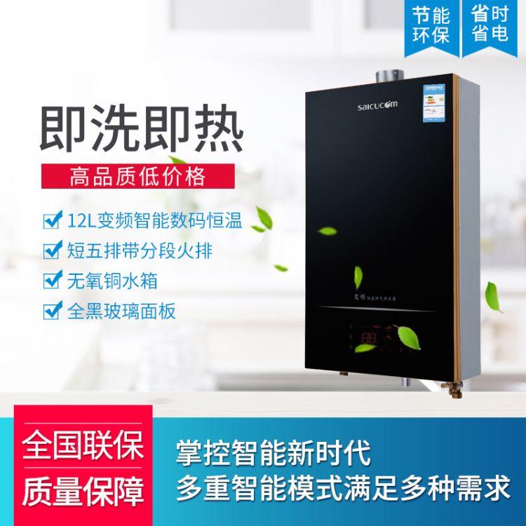 经销批发型号5739燃气热水器家用智能变频12L热水器 支持批发