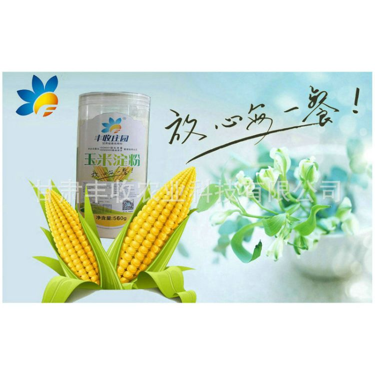 供应淀粉 预糊化淀粉 变性淀粉 玉米淀粉批发 欢迎订购