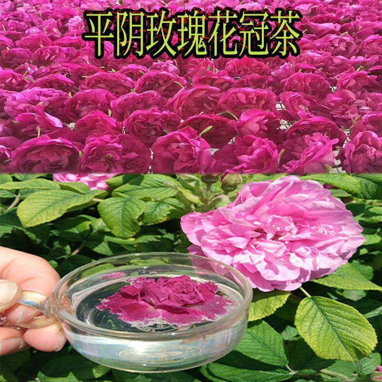 平阴无硫低温玫瑰花冠批发 2018年头期特级玫瑰花冠茶 散装花冠王