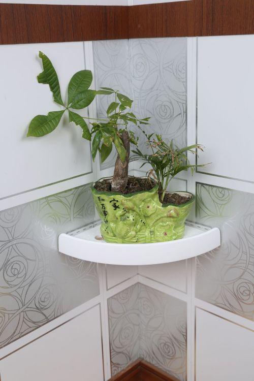 厂家热销snapup浴室置物架shelf免打孔三角吸盘壁挂厨房置物架