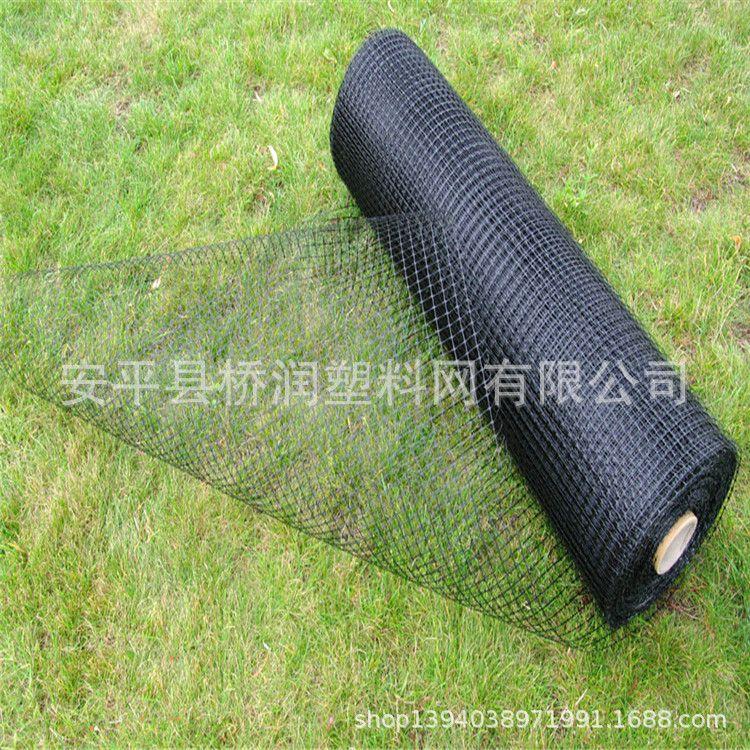 实体厂家供应塑料拉伸网 养鸡养殖网粘鸟网 PP塑料网 防鸟网