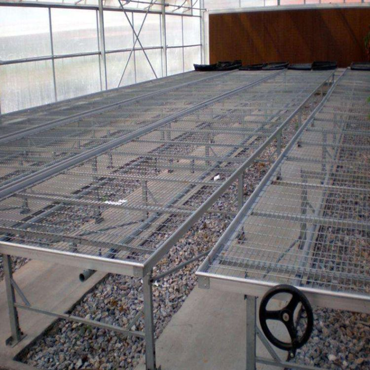厂家定制热镀锌铁丝网育苗苗床温室大棚蔬菜育苗床棚内育苗车定制