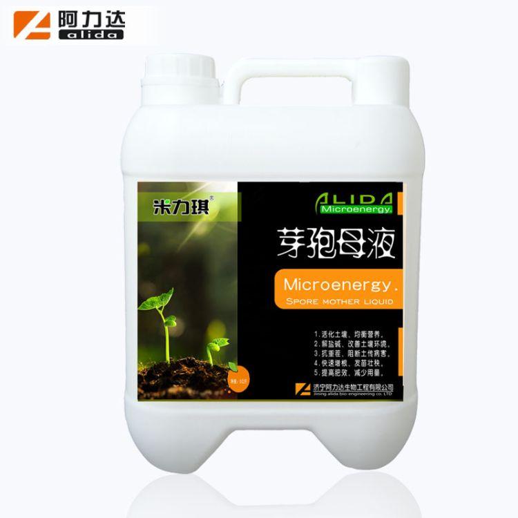 地衣芽孢杆菌 芽孢母液菌液 微生物菌剂 快速生根提苗壮秧5kg桶装