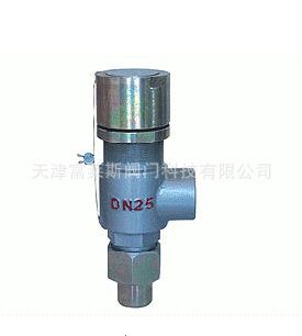 厂家提供 高压安全阀 高温安全阀 微型安全阀