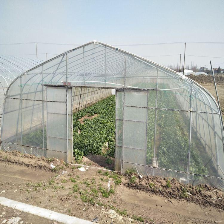 厂家直销 农业蔬菜大棚 单体大棚 大棚骨架 草莓大棚 大棚配件