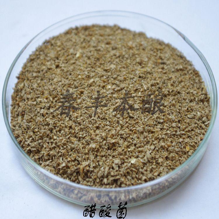 醋酸菌 果醋菌醋酸发酵苹果醋酿造菌种