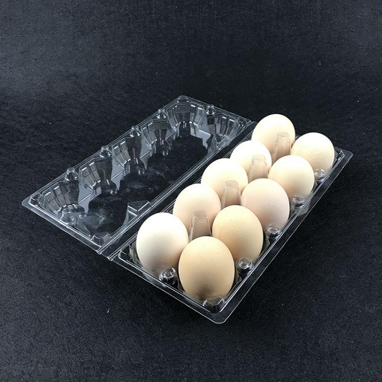 10枚装 薄款中号鸡蛋盒 塑料鸡蛋盒 鸡蛋塑料包装盒 pvc鸡蛋托