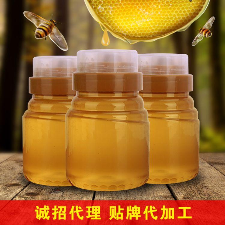 纯蜂蜜纯正天然农家自产土蜂蜜500g野生蜂蜜百花土蜂蜜蜂蜜制品