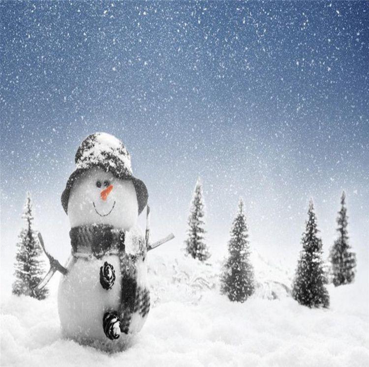 diy人造雪 圣诞假雪 橱窗场景布置装饰品仿真雪花人造雪花人工雪