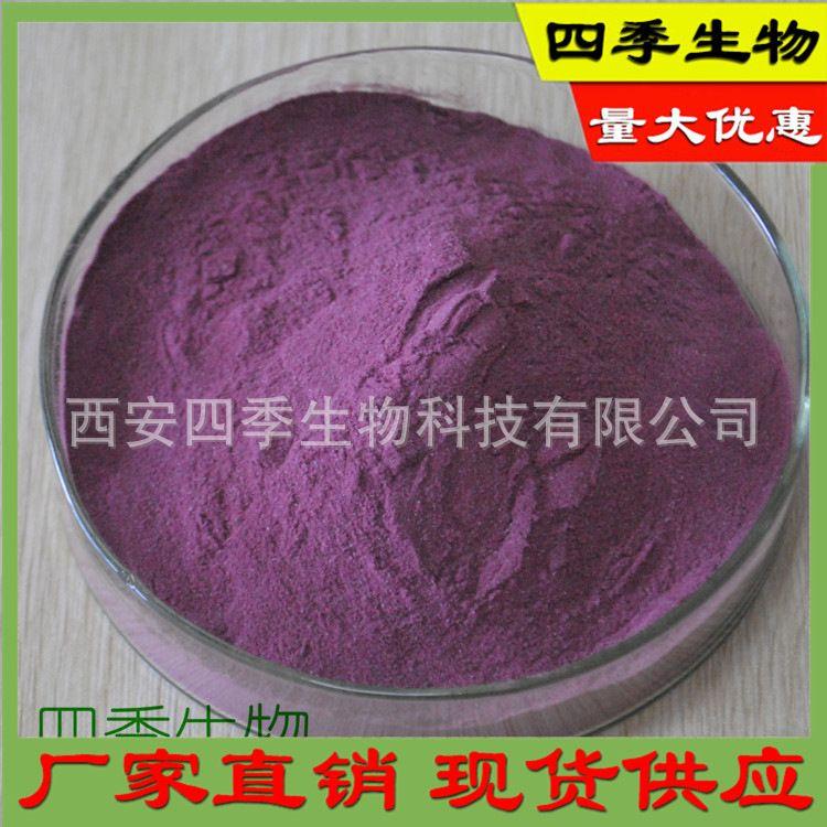 蓝靛果果粉 天然蓝靛果提取物 蓝靛果粉  现货厂家