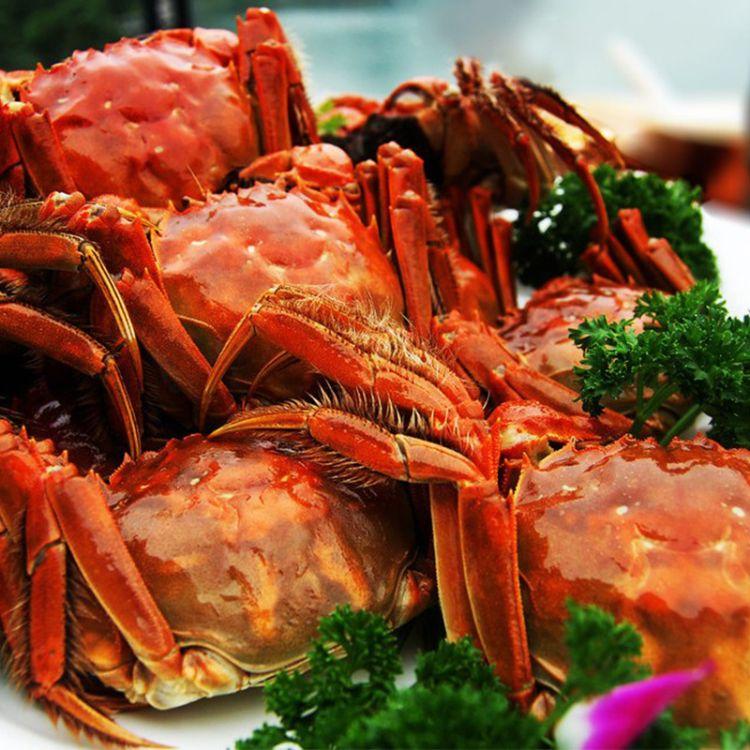 产地直销 澳珍蚝生活供应新鲜鲜活水产品大闸蟹