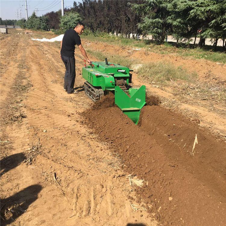 自走式苹果园旋耕机 履带式开沟回填机 深耕施肥机 田园管理机