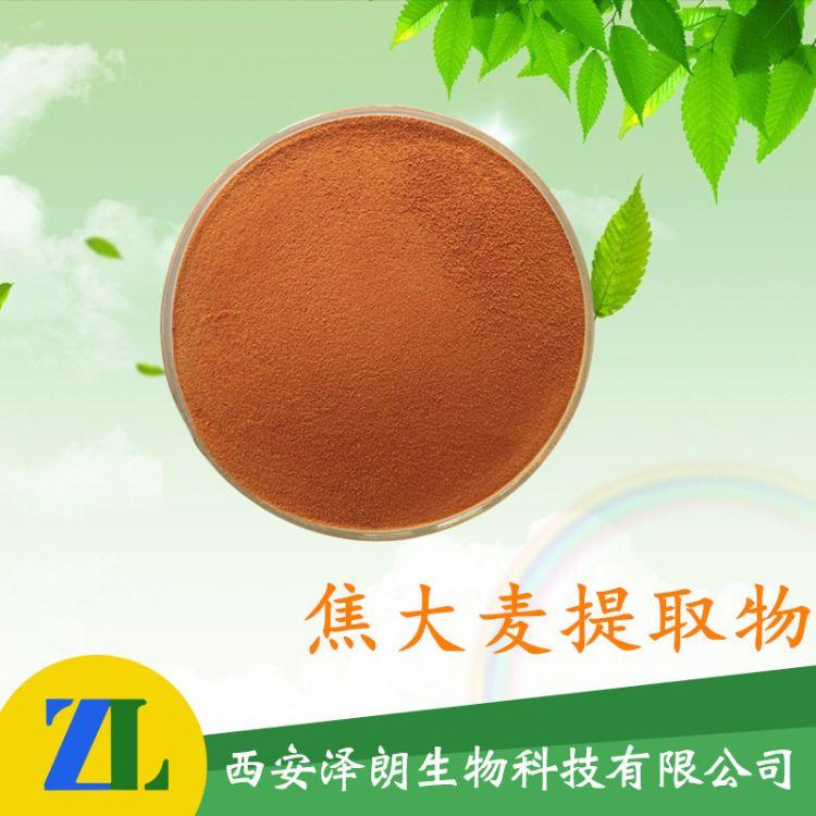 焦大麦提取物  焦大麦 植物提取物 支持OEM 现货包邮