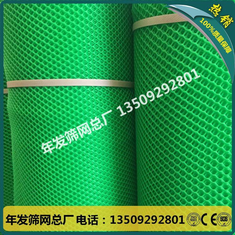 塑料平网家禽养殖网 聚乙烯胶网养鸡网 塑料网片塑料网格工厂直销